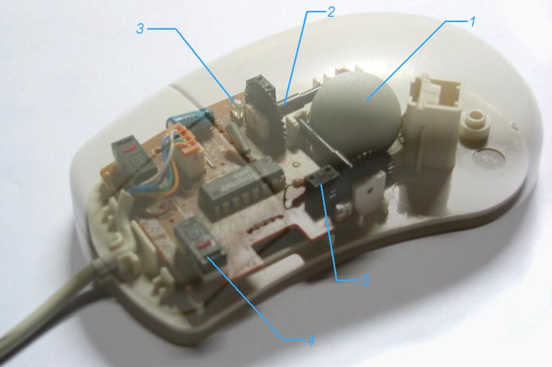 Mouse detalhado