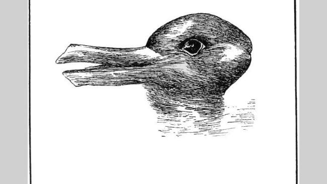 Ilusão da Cabeça de Coelho-Pato