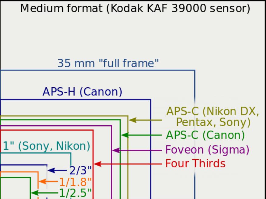 Diagrama mostrando os tamanhos relativos de diferentes sensores usados nas câmeras digitais de diferentes fabricantes