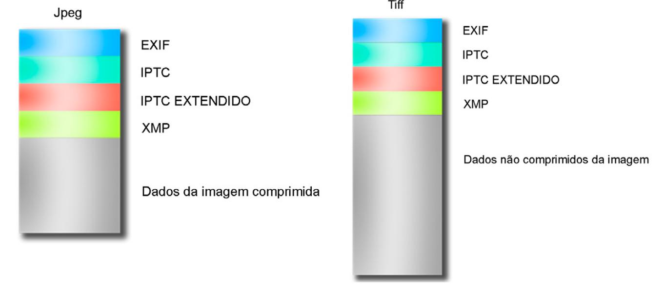 Formato JPEG e TIFF