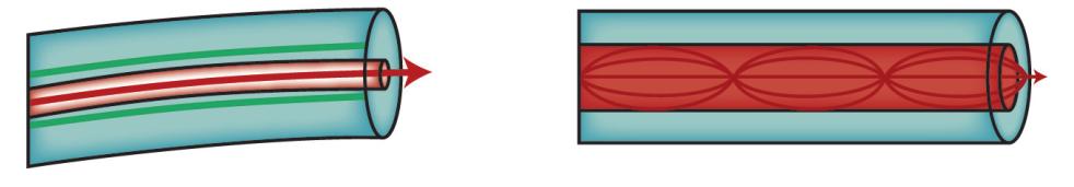Fibra monomodo e multímodo
