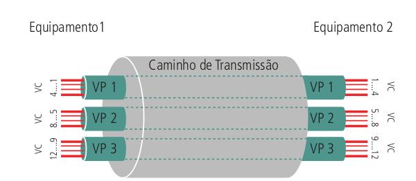 Conceitos dos circuitos virtuais